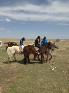 in de grasvlaken van Mongolie